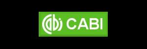 cabi300x100